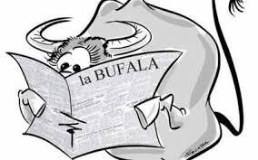 Bufale sui social: come e perché si diffondono?